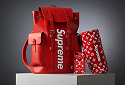 Louis Vuitton x Supreme E201