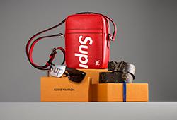 Louis Vuitton x Supreme E210