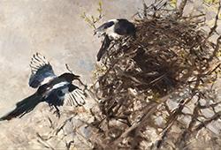 Djur och Natur i konsten E341