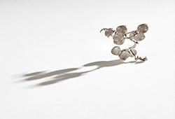Wivica Ankarcrona Borells smyckessamling E557